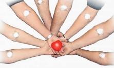 Önkéntes véradás a Belvárosi Napokon, vasárnap