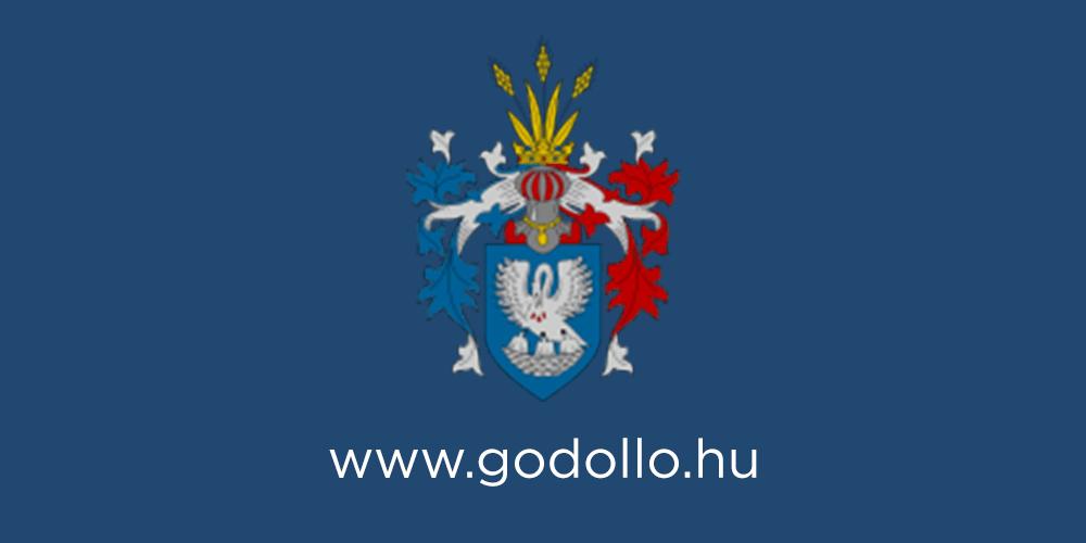 A képviselő-testület kérése: Segítsen forrást teremteni terveihez Vécsey László